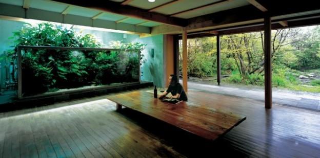 Auquagardening kann echte Inspiration für Innenraumgestaltung liefern. Auch in den eigenen vier Wänden!