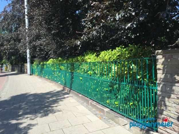 Regelmäßig den Zaun streichen lassen ist sinnvoll - sonst wird´s irgendwann richtig teuer!