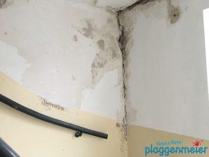 Bei der Renovierung eines Treppenhauses wäre es fahrlässig solche Stellen vom Anstreicher zuschmieren zu lassen! Wir haben zum Glück unseren Maurerservice...