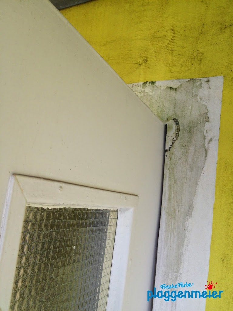 Bitte keine Fehler bei der Dämmung machen - Geld sparen mit geprüften Energie Experten - frische Farbe Plaggenmeier