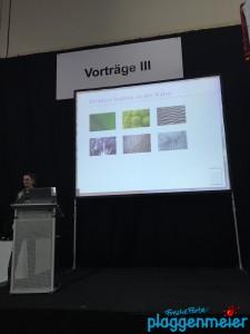 Die Architektin Vera Apel bei ihrem Vortrag über Feng Shui...