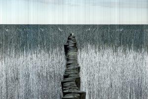 Über die Zeit - 650 Einzelaufnahmen liefern ein Gesamtbild - Maler Bremen